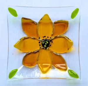 Dish yellow flower